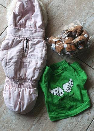 Куртка ,пинетки для чихуахуа