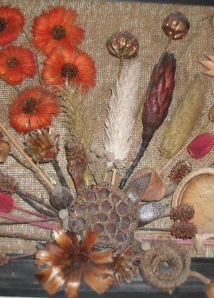 Картина из природных материалов -сухоцвет