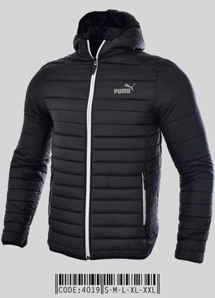 Весенняя куртка ветровка puma с капюшоном