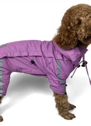 Универсальный дождевик для собаки, регулировка со всех сторон!