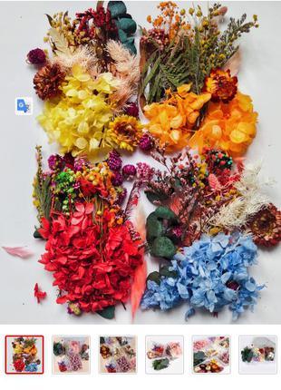 Упаковка сушеных цветов-изготовление свечей, дизайн ногтей, декор