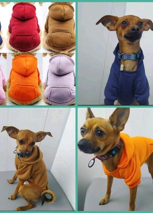 Одежда для животных котов собак мелких пород