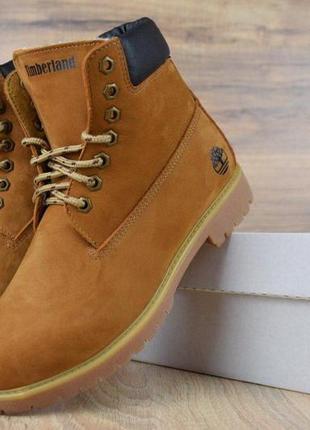 Шикарные зимние женские ботинки/ сапоги/ угги timberland class...