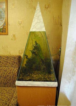 Аквариум пирамида