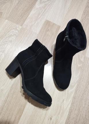 Шикарные замшевые ботинки полусапожки на устойчивом каблуке и ...
