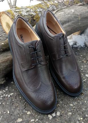 Ікос туфли, броги