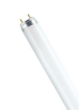 Люминесцентная лампа (люмінесцентні лампи)