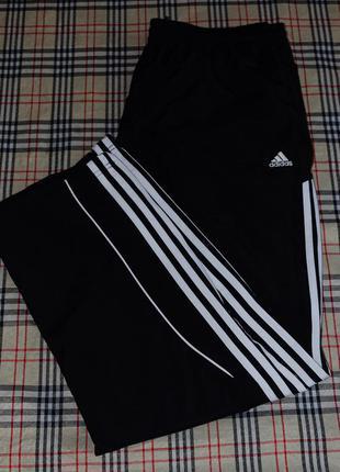 Спортивные штаны adidas с лампасами спортивные штаны с лампаса...