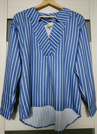 Рубашка / блузка в полоску