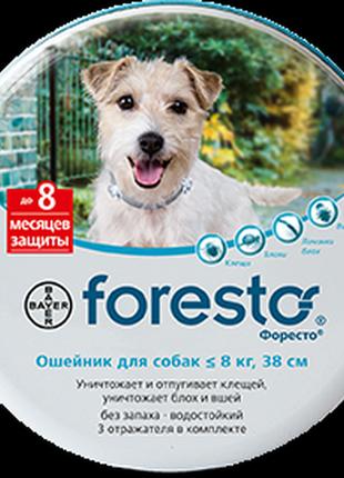 Ошейник Bayer Форесто от блох и клещей для собак и молодых пород