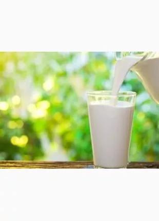 Сухое молоко Экстра для выпойки