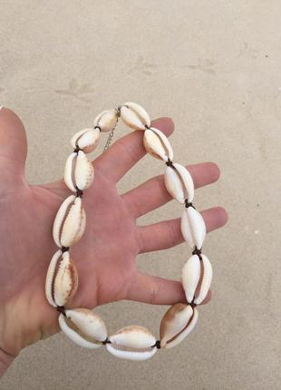 Бусы - чокер из натуральных моллюсков КАУРИ