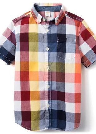Рубашка для мальчика 10-12 лет gymboree