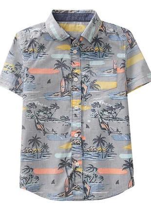 Рубашка для мальчика 8-9 лет gymboree