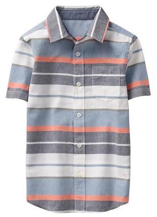 Рубашка для мальчика 3-4 года gymboree