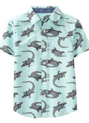 Рубашка для мальчика 5-6, 6-7, 7-9 лет gymboree