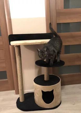 Домики для котов ,когтеточка