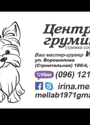 Стрижка собак, кошек и др. животных