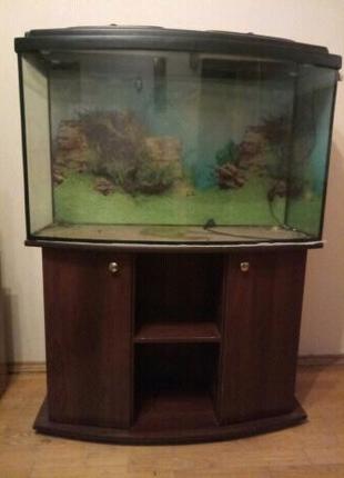 """СРОЧНО!!! шикарный аквариум """"Природа""""225л"""