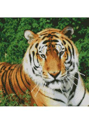 "Алмазная мозаика ""Взгляд тигра"""
