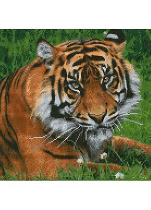"Алмазная мозаика ""Строгий тигр"""