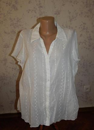 Bm блузка котоновая стильная модная жатка р18 большой размер