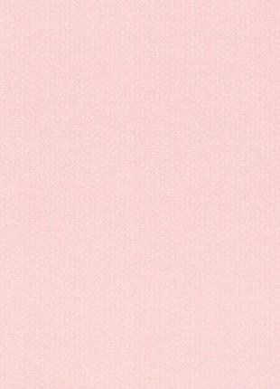Обои Rasch Petite Fleur 4 289021