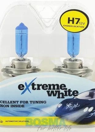 Автомобильная лампа 8436 H7 12V 55W PX26d EXTREME WHITE Bosma