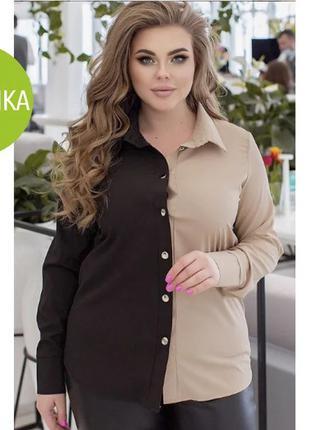 """Женская двухцветная блуза """"Oxford""""Батал"""