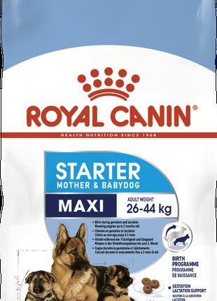Сухой корм для щенков Роял Канин Royal Canin maxi starter, 1 кг