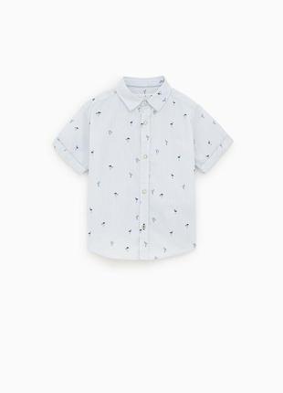 Рубашки для мальчиков zara испания