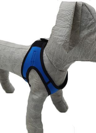 Шлейка жилет для собак Фитнес 3