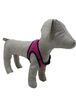Шлейка жилет для собак Фитнес 2
