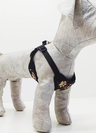 Шлейка жилет для собак Глория №3