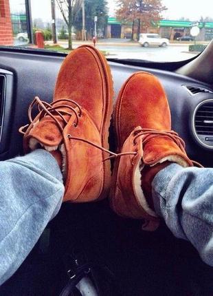Ботинки дезерты испания теплые с мехом, брендовая обувь по дос...