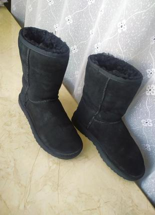 Ugg угги уги ботинки натуральная шерсть ugg ( австралія ) 37 р...