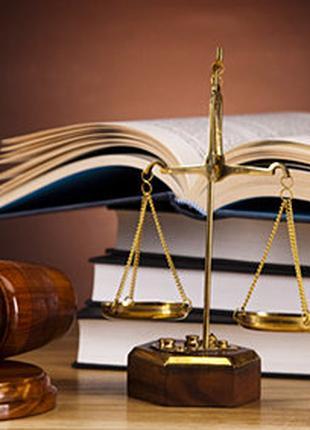 Подготовка и подача жалоб и исковых заявлений
