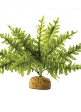 Hagen Exo Terra Rainforest Plant Boston Fern Small искусственн...