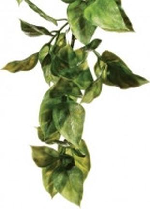Hagen Exo Terra Jungle Plant Amapallo Small искусственное раст...