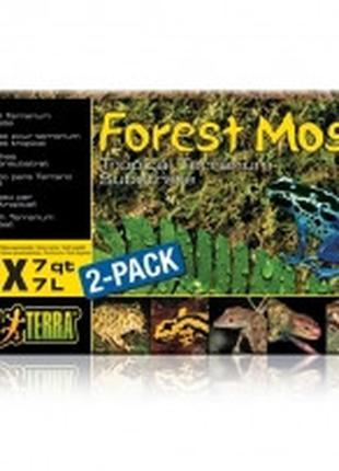 Hagen Exo Terra Forest Moss лесной мох для террариума, 500г