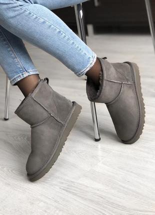 Шикарные женские сапоги угги ugg classic ii mini grey серые😃 {...