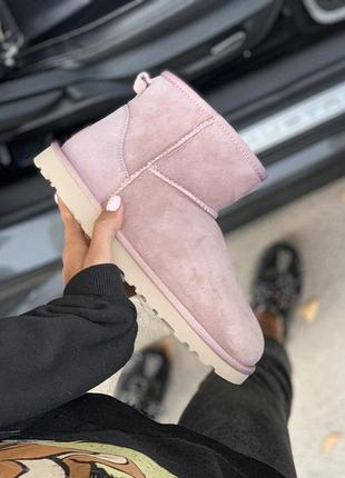 Ugg classic mini pink розовые низкие шикарные женские сапоги б...