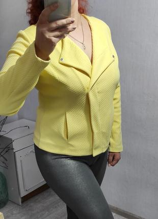 Стильный пиджачек - косуха большого размера 52 (18)