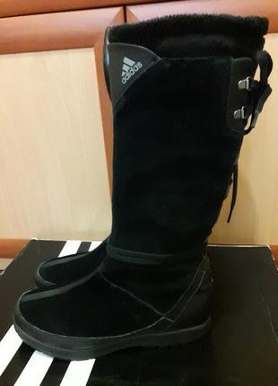 Замшевые сапоги adidas winter kawaya 24- 24,5
