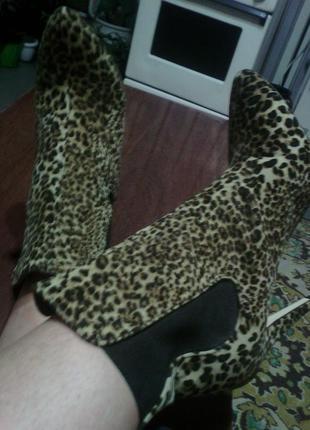 Трендовые леопардовые ботинки на высоком каблуке 39 размер дешево