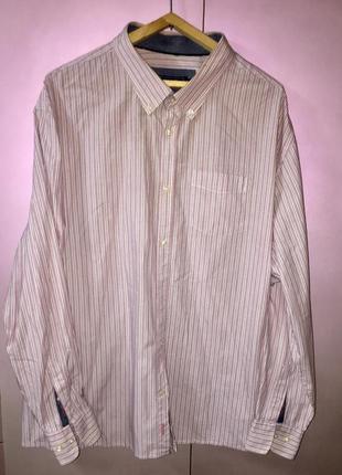 Рубашка большой размер цвет- белая розовая тонкая полоска.