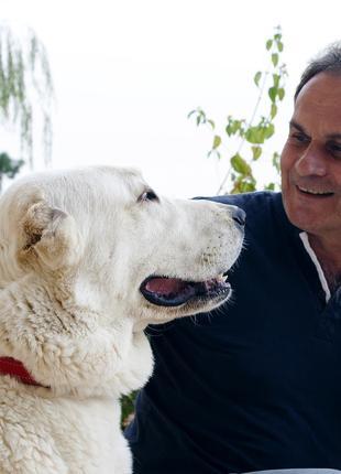 Дрессировка собак с проблемным поведениeм - зоопсихолог