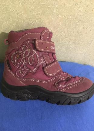 Ботинки, сапоги  geox размер 28