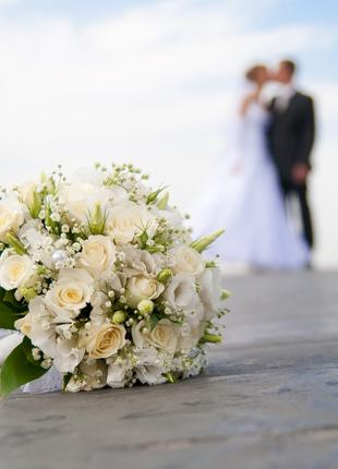 Фотограф. Дни рождения, свадьбы, праздники, индивидуальные.