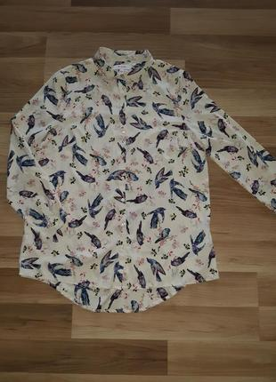 Модная блузка в птицы